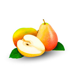 pear whole and slices sweet fruit on a white vector image