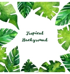 background with watercolor green leaves vector image