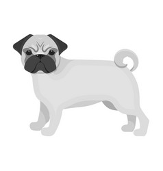 Bulldog single icon in monochrome stylebulldog vector