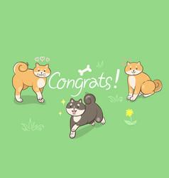Greeting card with shiba inu congrats graphics vector