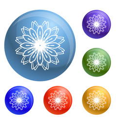petal flower icons set vector image