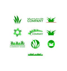 set of grass logo design template vector image