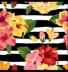 Tropical hibiscus flower seamless pattern vector