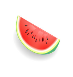 watermelon fruit slice icon vector image