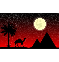 Night in egypt vector