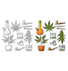set marijuana vintage black and color vector image
