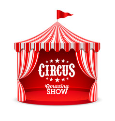 Amazing circus show poster background vector