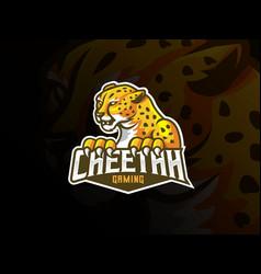 cheetah mascot sport logo design vector image