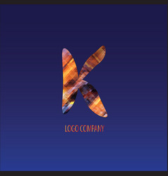corporate logo letter k vector image