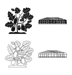 Design of greenhouse and plant logo vector