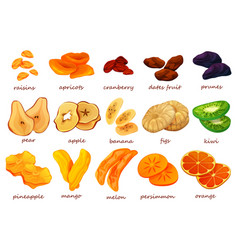Dried fruits and berries dry sweet snack vector