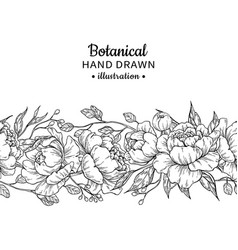floral seamless vintage border peony vector image