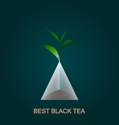 Isolated pyramid of black tea with branch vector image vector image