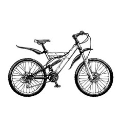 mountain bicycle vector image