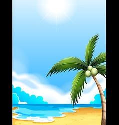 A beach with a coconut tree vector
