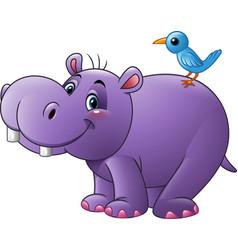 cartoon funny hippo with bird vector image