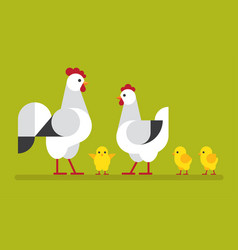 chicken family flat vector image