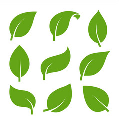 eco green color leaf logo flat icon set isolated vector image