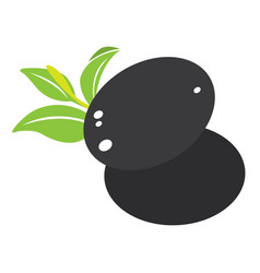 isolated spa icon vector image