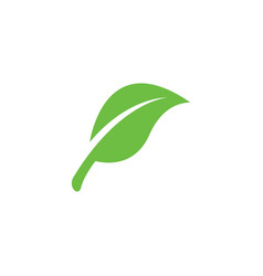 leaf icon design template isolated vector image