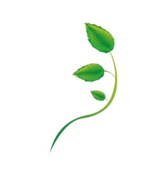 Leaf sprout icon image vector