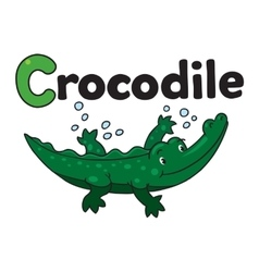 Little crocodile or alligator for ABC Alphabet C vector image