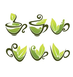 organic tea vector image