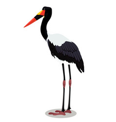 Saddle billed stork cartoon bird vector