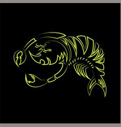 shrimp line vector image
