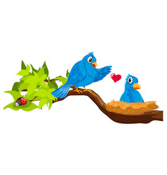 two blue birds in nest vector image