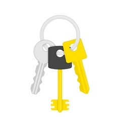 Keys on key ring vector image