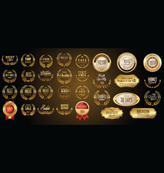 luxury gold and silver design badges and labels vector image vector image