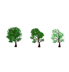 the set of summer and spring trees vector image vector image
