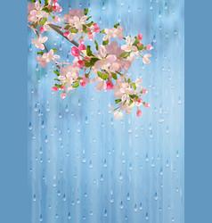 spring flowers rain vector image vector image