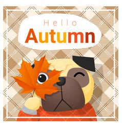 Hello autumn background with happy dog vector