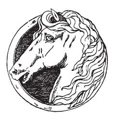 horse head has a modern german design vintage vector image