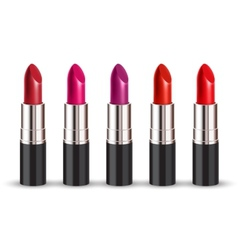 lipstick set vector image