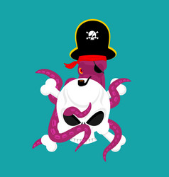 octopus pirate and skull poulpe buccaneer and vector image
