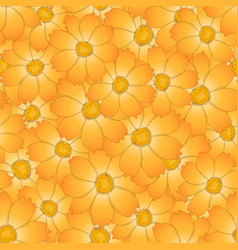 Orange yellow cosmos flower seamless background vector