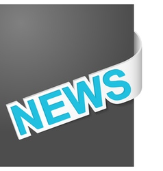 right side sign news vector image