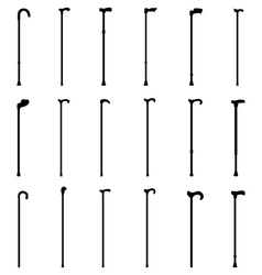 walking sticks vector image