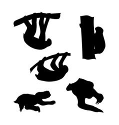 silhouettes of a sloth vector image