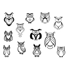 Cute owls and owlets vector image vector image
