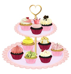 Cupcakes at the tray vector image vector image