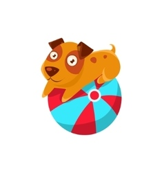 Puppy Balancing On The Inflatable Ball vector image