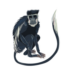 Blue monkey with long hair tail jungle mammal vector
