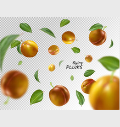 Flying orange plums on transparent background vector