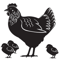 Hen and chiken vector