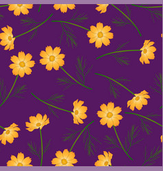 Orange yellow cosmos flower on purple background vector