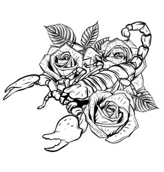 scorpion and roses - color tattoo vector image
